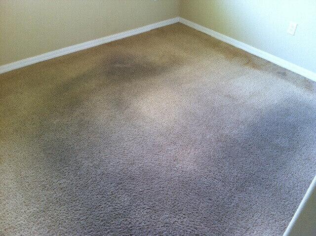 Williamsburg Carpet Cleaning